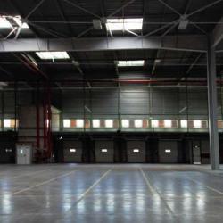 Location Entrepôt Saint-Michel-sur-Orge 41259 m²