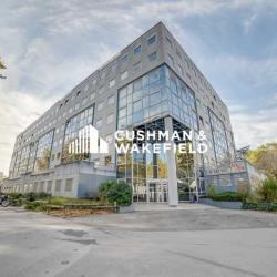 Location Bureau Lyon 8ème 167,63 m²
