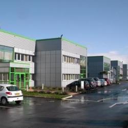 Location Bureau Castelnau-d'Estrétefonds 168 m²