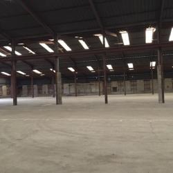 Location Entrepôt Saint-Jacques-de-Thouars 4000 m²