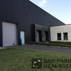 Vente Local d'activités Longvic 2613 m²