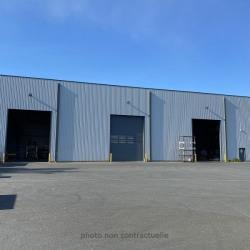 Location Local d'activités Sandouville 1780 m²