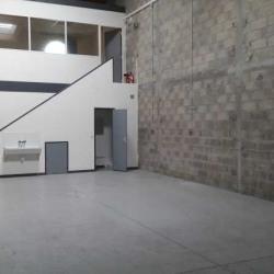 Location Local d'activités Mandres-les-Roses 126 m²