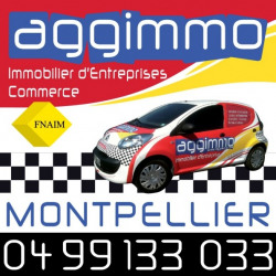 Location Local commercial Montpellier 14 m²