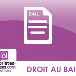 Cession de bail Local commercial Lyon 5ème 45 m²