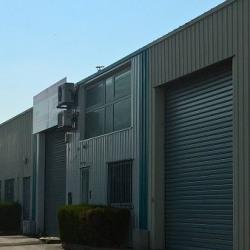 Vente Local d'activités Saint-Pierre-des-Corps 230 m²