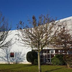 Vente Local d'activités La Chapelle-des-Fougeretz 3900 m²