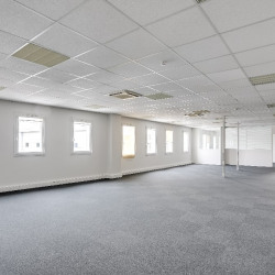 Location Bureau Décines-Charpieu 610 m²