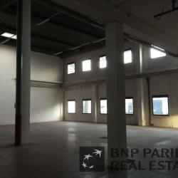 Location Local d'activités Osny 876 m²