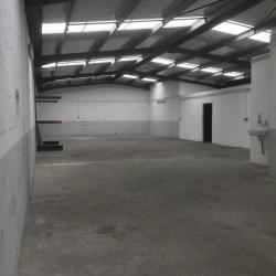 Location Local d'activités Paray-Vieille-Poste 320 m²