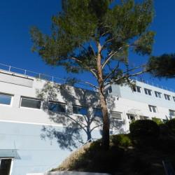 Location Bureau La Ciotat (13600)