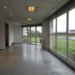 Location Local commercial Colomiers 306 m²