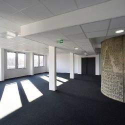 Vente Bureau Saint-Priest 5374 m²