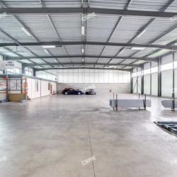 Location Local d'activités Toulouse 1030 m²