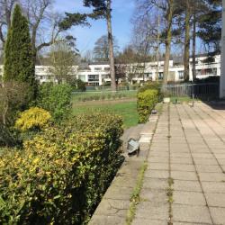 Location Bureau Lambersart 90 m²