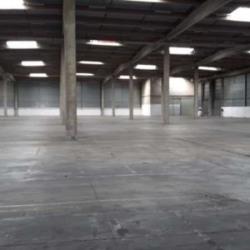Location Local d'activités Lieusaint 22391 m²