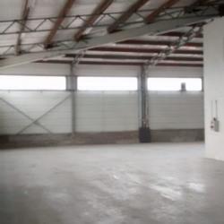 Location Local d'activités Chassieu 240 m²