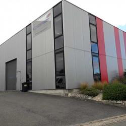 Location Local d'activités Villenave-d'Ornon 236 m²