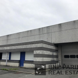 Location Local d'activités Tourcoing (59200)