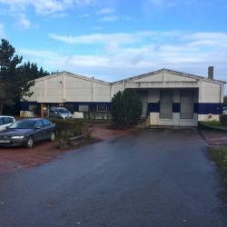 Location Local d'activités Labourse 1500 m²