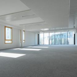 Location Bureau Lyon 7ème 1353 m²