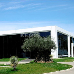 Location Bureau Colomiers 1416 m²