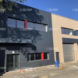 Location Local d'activités Villebon-sur-Yvette 4641 m²