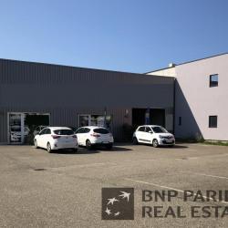 Location Local d'activités Molsheim 149 m²