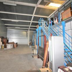 Location Local d'activités Castres 310 m²