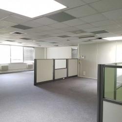 Vente Bureau Villepinte (93420)