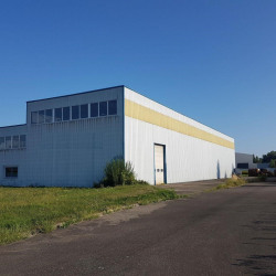 Vente Local d'activités Herrlisheim 1315 m²
