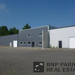 Location Local d'activités Rennes 450 m²