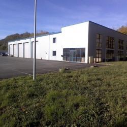Location Local commercial Le Lardin-Saint-Lazare 965 m²