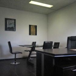 Vente Bureau Mandelieu-la-Napoule 240 m²