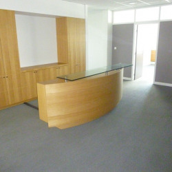 Location Bureau Toulouse 230,11 m²