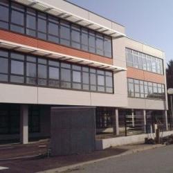 Location Bureau Illkirch-Graffenstaden 339 m²