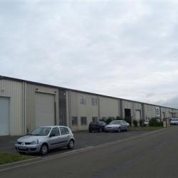 Location Local d'activités Les Mureaux 750 m²