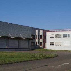 Vente Entrepôt Strasbourg 3432 m²