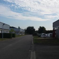 Location Local d'activités L'Union 625 m²