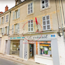 Vente Local commercial Vierzon 225 m²
