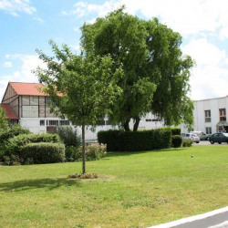 Location Bureau Bezons 644 m²