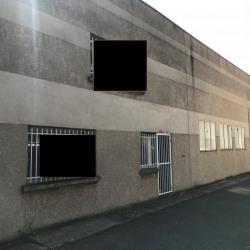 Vente Local d'activités Vénissieux 355 m²