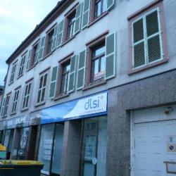 Location Local commercial Sarreguemines 58 m²