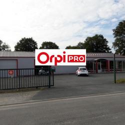 Location Local d'activités Argent-sur-Sauldre 410 m²
