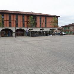 Vente Local commercial Plaisance-du-Touch 59 m²
