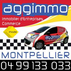 Location Entrepôt Montpellier 66 m²