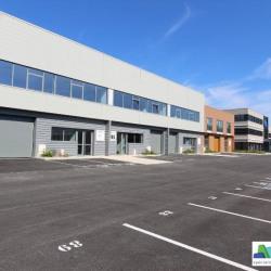 Location Local d'activités Bussy-Saint-Martin 293 m²
