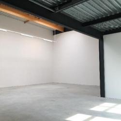 Location Local d'activités Lieusaint 297 m²