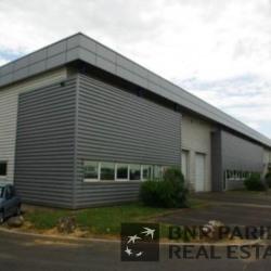 Location Bureau Saint-Cyr-sur-Loire 230 m²