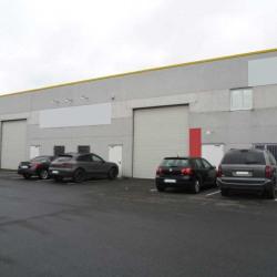 Location Local d'activités Seclin 360 m²